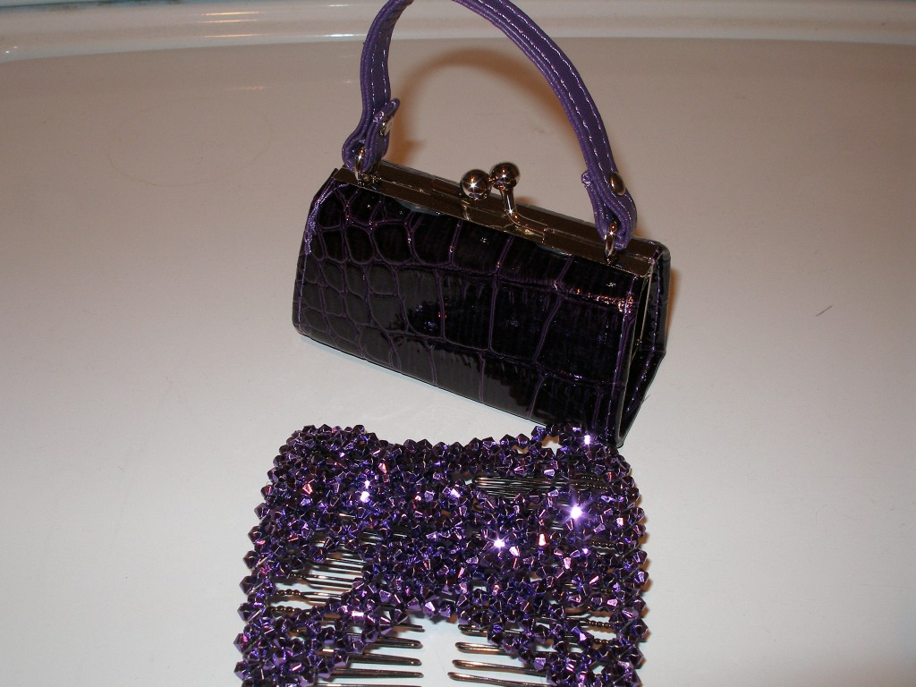 purple purse, hair thing, smores, shirt 002