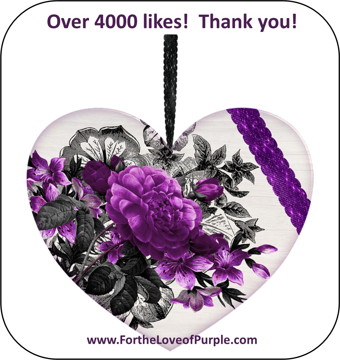 Welcome all my new Purple Facebook Fans!