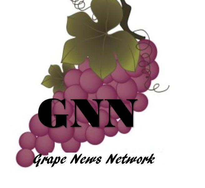 Grape News Network Coming Soon!