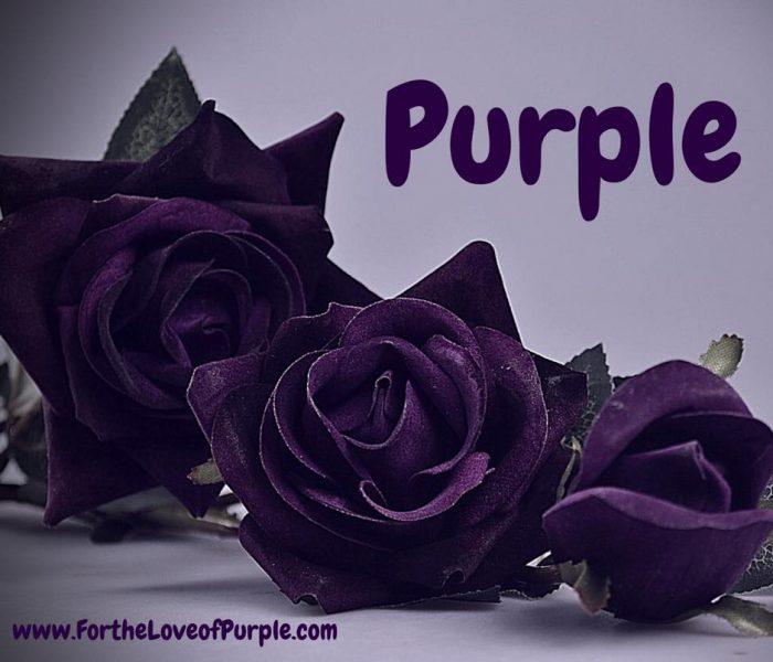Newest Purple Creations